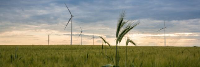 2017, la triple rupture de l'écologie en politique