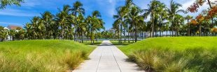 3 conseils pour voyager aux States de manière écologique
