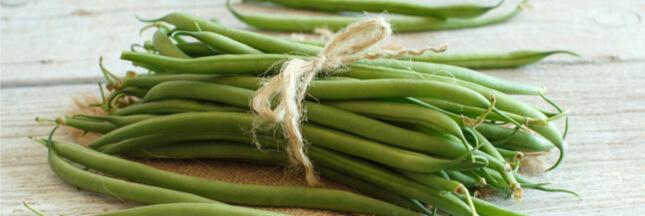 Le haricot vert, idéal pour faire le plein de fibres cet été