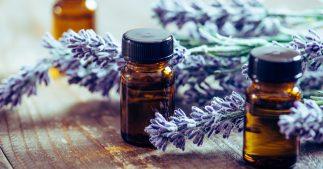 huile essentielle de lavande aspic