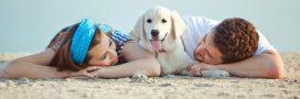 Sondage – Les vacances d'été: avec ou sans votre animal de compagnie?