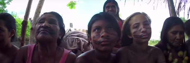 Déforestation: encore un 'gardien de l'Amazonie' victime des forestiers