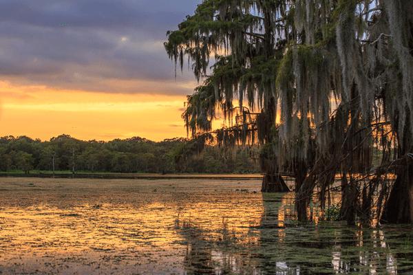 Bayou en Louisiane