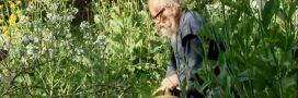 Jardinage: connaissez-vous la méthode Fukuoka?
