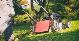 Le mulching ou comment fertiliser naturellement