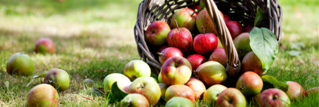La pomme à cidre... un trésor de bienfaits pour votre peau !