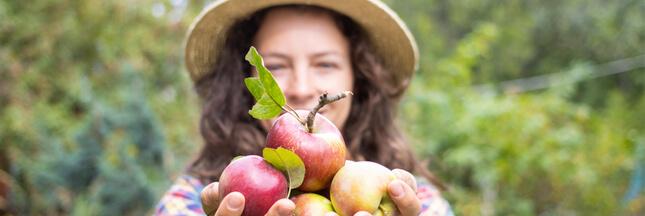 La pomme à cidre… un trésor de bienfaits pour votre peau!