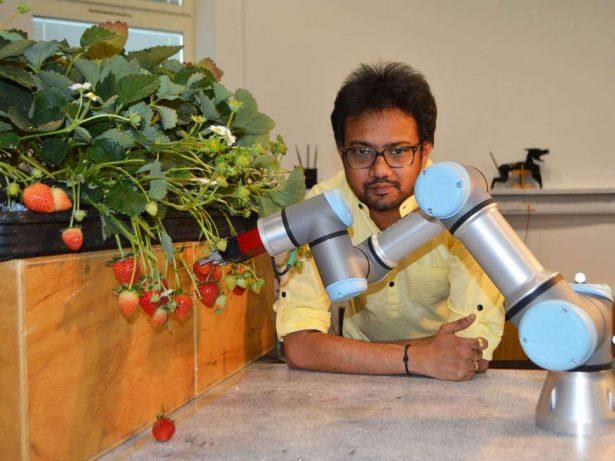 robot récolte