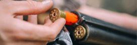 En plus de la biodiversité, les munitions au plomb menacent l'environnement et la santé