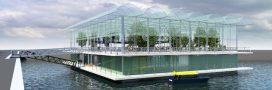 Une ferme laitière flottante dans le port de Rotterdam!