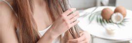Beauté: 3 bienfaits du lait de coco pour les cheveux