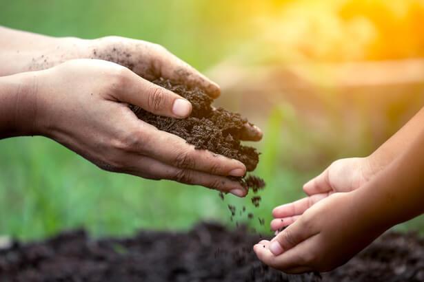 agroécologie automne