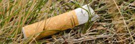 Pourquoi et comment recycler les mégots de cigarette?