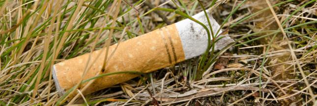 Pourquoi et comment recycler les mégots de cigarette ?