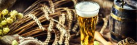 Le saviez-vous? On a inventé l'alcool avant l'agriculture!