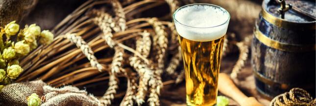 Le saviez-vous ? On a inventé l'alcool avant l'agriculture !