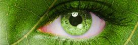 Les bulletins hebdo de la biodiversité #30