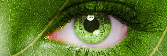 Les bulletins hebdo de la biodiversité #11