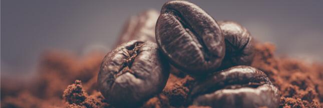 Filière du café: la success-story qui cache la crise