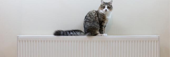 Comment bien entretenir ses radiateurs?
