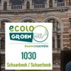 En Belgique, des élections municipales teintées de vert