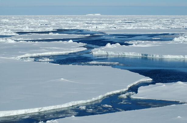 pêche commerciale Arctique