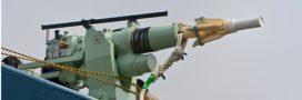 Enfin une victoire: la pêche du rorqual boréal au Japon déclarée illégale