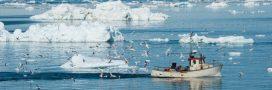 Un accord inédit interdit la pêche commerciale en Arctique!