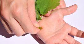 Verrues: nos secrets pour leur faire la peau naturellement