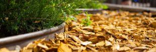 Le bois raméal fragmenté (BRF) pour valoriser ses haies en automne