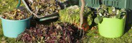 Le paillage du potager: indispensable en automne
