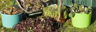 Le paillage du potager : indispensable en automne