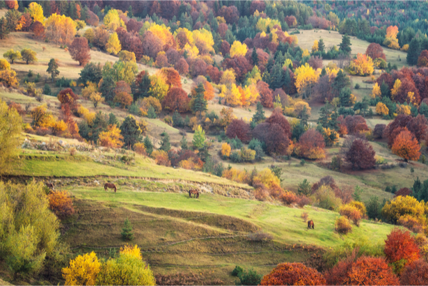 europe automne