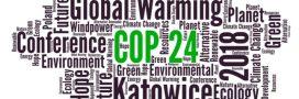Quels enjeux pour la COP24?