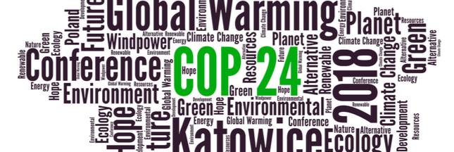 Quels enjeux pour la COP24 ?