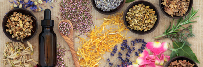 Fabriquer ses remèdes naturels?  Un passionné vous dit comment!