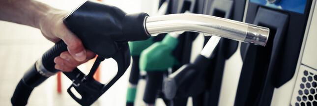 Carburants, transition écologique : des ONG rentrent dans le débat