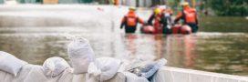 Les effets du changement climatique? 'Un film d'horreur qui serait réel'