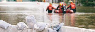 Les effets du changement climatique ? 'Un film d'horreur qui serait réel'