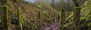 Dans la Meuse, la pollution de la Grande Guerre empoisonne les sols