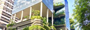 L'évolution des normes environnementales dans l'immobilier neuf