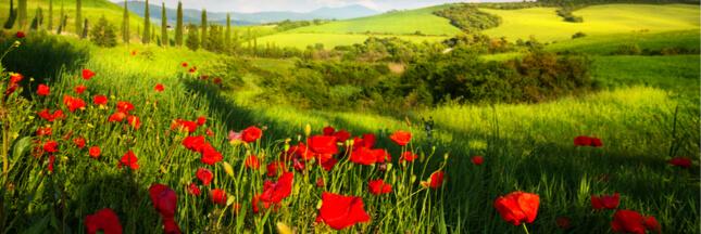 Une Europe agroécologique pour 2050 ?