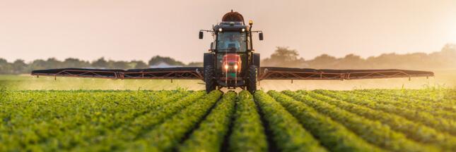 Les Etats-Unis renouvellent l'autorisation d'un pesticide controversé