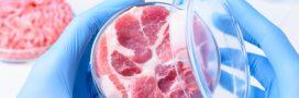 Les Américains pourraient bientôt manger de la viande de laboratoire