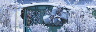 Que faire au jardin avec son enfant en hiver ?