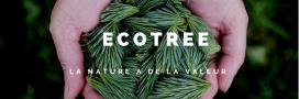 Conscient, durable, rentable: EcoTree LE cadeau idéal pour Noël