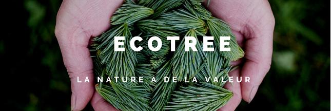Ethique, éco-responsable et durable: EcoTree, LE cadeau idéal pour Noël