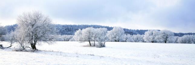 Pourquoi la neige rend-elle tout si calme et feutré?
