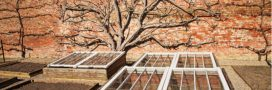 Au potager, cultiver sous serre châssis pour profiter de la saison froide