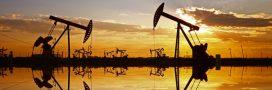 Hydrocarbures: explorations et exploitations continuent malgré la Loi Hulot